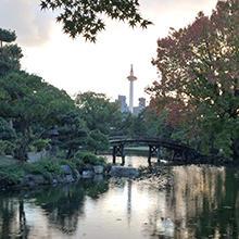京都は住んでこそ魅力が判る街