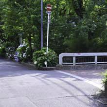 京都をまちブラしよう!ー五条高瀬川ー